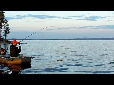 рыбалка в карелии на белом море форум
