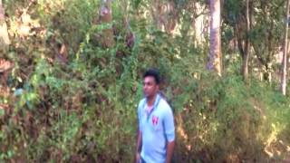 Sonar o pinjira bangla song 2015 Model by Aiat...