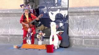 Músico callejero en Bilbao (música andina)
