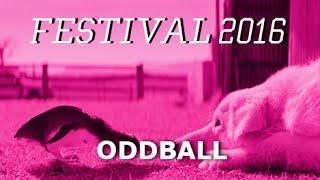 Oddball (Trailer)