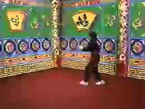 Kung Fu Theater: Sifu Lacey, Choy Lai Fut