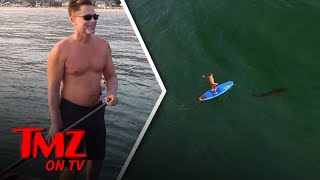 Rob Lowe: Shark Bait? | TMZ TV
