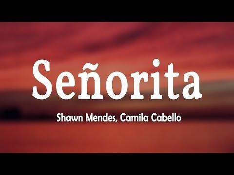 Shawn Mendes Camila Cabello Señorita Lyrics Video