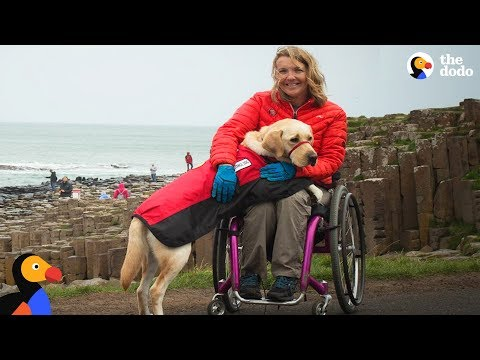 Xxx Mp4 Service Dog Inspires Injured Woman To Live Life To The Fullest The Dodo 3gp Sex
