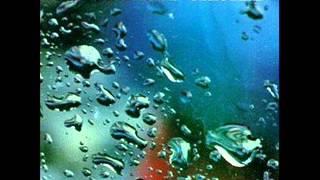 The Ocean Blue - Cerulean [Full Album]
