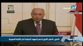 شكري: الدول الأربع تدعم الجهود الدولية لحل الأزمة السورية