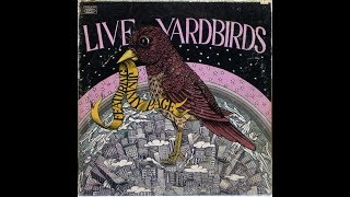 The Easy Rider Generation In Concert: Live Yardbirds featuring Jimmy Page (NY, USA 30th March 1968)