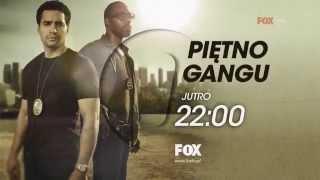 Fox HD Poland (Summer Request #13) Continuity 2014