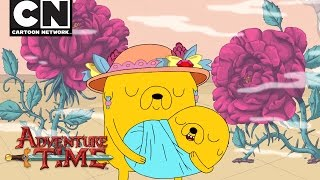 Adventure Time | The Hole Is Gone | Cartoon Network