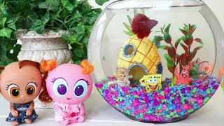 Babies and Toddlers Get a Real Fish ! Toys and Dolls Fun for Kids & Baby Doll Play   SWTAD