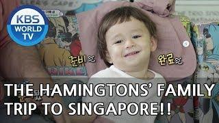 The Hammingtons