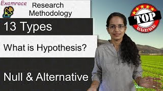 What is Hypothesis? 13 Types of Hypothesis (Null & Alternative) - Research Methodology