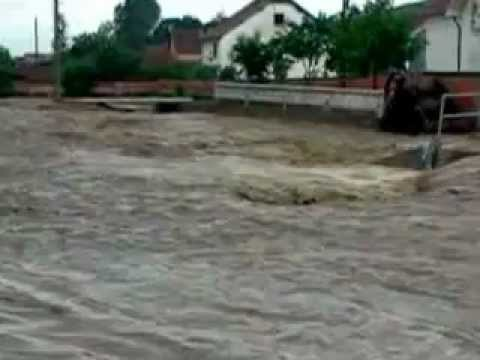 Vershimet Ne Fshatin Zhiti Komuna Viti s 31.05.2012
