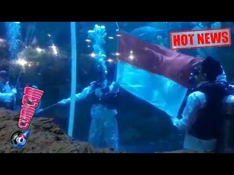 Xxx Mp4 Hot News Keren Ini Video Saat Aurelie Kibarkan Bendera Di Bawah Laut Cumicam 17 Agustus 2017 3gp Sex