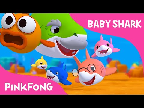Xxx Mp4 Baby Shark Sing And Dance Animal Songs PINKFONG Songs For Children 3gp Sex