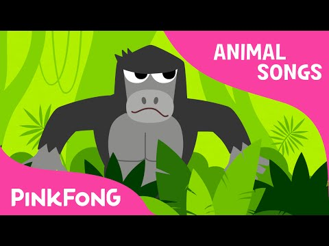 Xxx Mp4 Jungle Boogie Animal Songs PINKFONG Songs For Children 3gp Sex