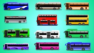 Learn Colors With Buses | Vehicles For Kids | Children