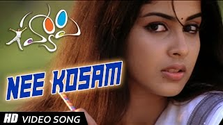 Nee Kosam - Melodious Full Video Song || Happy Movie || Allu Arjun, Genelia ||