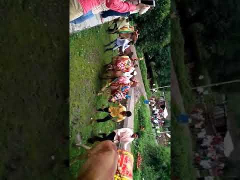 Bail Pola pimpalgao mahadeo..2017.