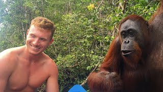 B!#&H SLAPPED BY WILD ORANGUTAN IN BORNEO!!! 👋🏻🐵😂