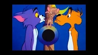 Tom And Jerry English Episodes - Funny Cartoon - Cat and Dupli-cat