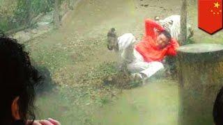 Pria diserang harimau melompat masuk ke kandang, berkata ingin memberi makan - TomoNews
