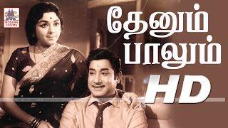 Thenum Palum Full Movie HD தேனும் பாலும் சிவாஜி சரோஜாதேவி பத்மினி நடித்த காதல் காவியம்