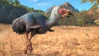 Phorusrhacidae: The Birds of Terror