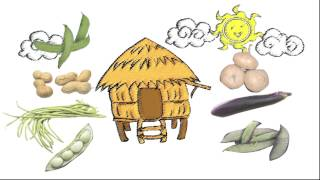 Bahay Kubo (Filipino Children's Song - Tagalog)