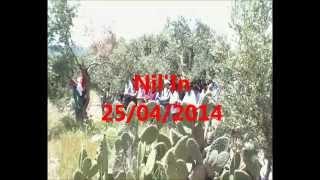 Nil'in 25/04/2014
