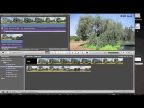 Tutorial - How To: Add Logo/Watermark To Video With iMovie 9, (iLife '11), or Final Cut Pro X