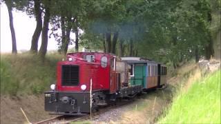 50 Jahre DEV, Museums-Eisenbahn Bruchhausen-Vilsen, Fahrzeugparade am 29-07-2016
