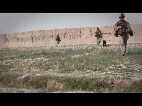 The Defiant - Infidel (Lyric Video)