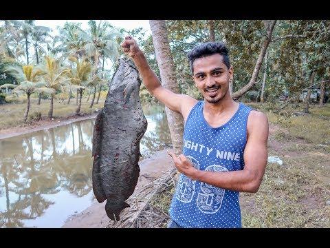Xxx Mp4 Catching Catfish In Kerala River 🐳പുഴയിൽ ചൂണ്ടയിട്ടപ്പോൾ കിട്ടിയ മീൻ ഒരു ലോക്കൽ മീൻപിടുത്തം 3gp Sex