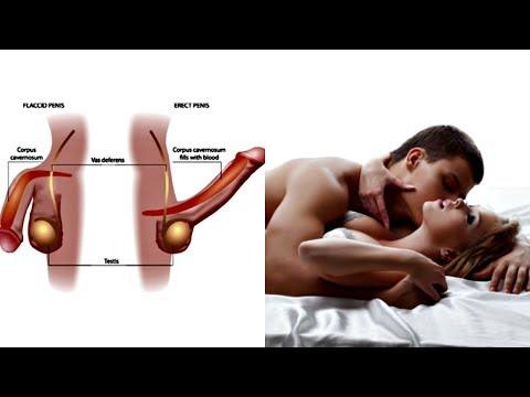 Xxx Mp4 Black Maca Root Huanarpo Macho 3 Month Review SEX ALL NIGHT 3gp Sex