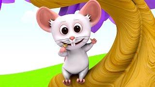 Nursery Rhymes Collection | Kindergarten Nursery Rhymes & Songs for Kids