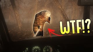 BEWARE - Creepy Lady In The Woods - A 2nd Chase Car! - New Beware Secrets - Beware Demo Gameplay
