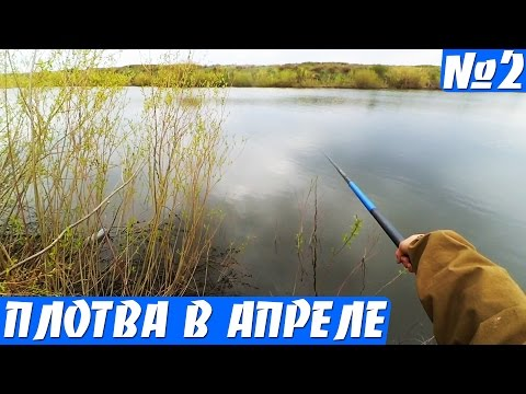 рыбалка апрель май плотва
