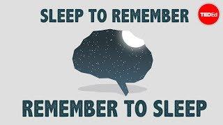 The benefits of a good night's sleep - Shai Marcu