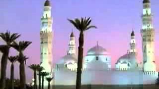 تلاوه في قمة الروعه والجمال لما تيسر من سورة الاحقاف بصوت القارئ مجاهد علم الدين الخالدي من السودان