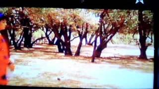 فيلم مغربي أمازيغي