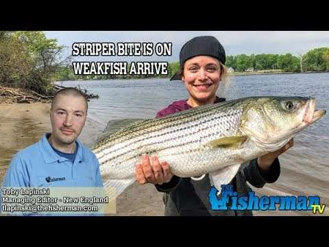 May 17, 2018 New England Fishing Report with Toby Lapinski