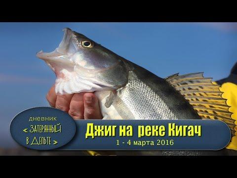 рыбалка на ближней волге
