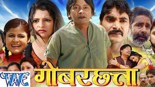 गोबरछता - Gobar Chhatta - Maithili Film Trailer 2015 | Maithili Film Promo 2015 - B.N. Patel, Reena