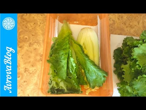 Лист салата в домашних условиях