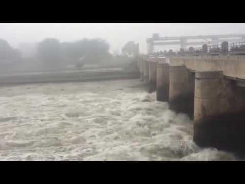 Harike Rajasthan canal