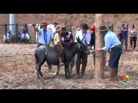XXIV Rodeio Estadual de Paraí Gineteada