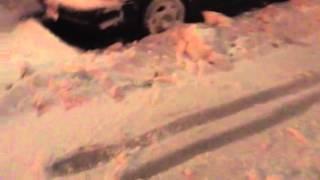Segway snow