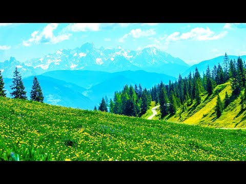 Xxx Mp4 Relaxing Morning Music Piano Music Background For Study Yoga Meditation Honley 3gp Sex