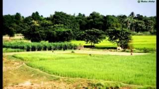 bd village views